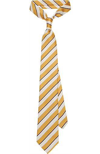 YELLOW_TIE_D131127